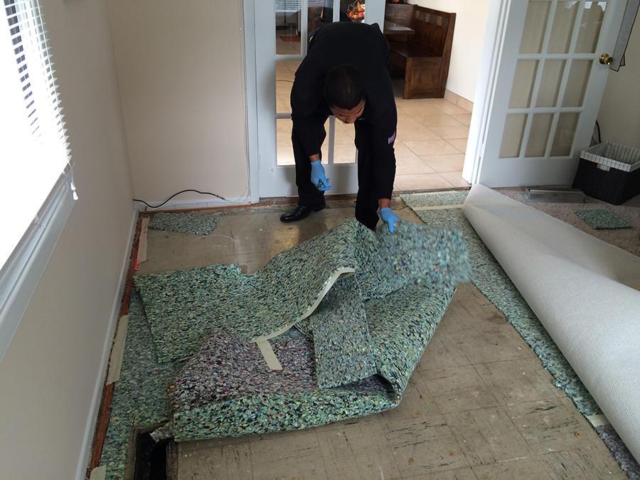 Baltimore Carpet & Upholstery image 7