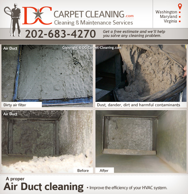 DC Carpet Cleaning image 0