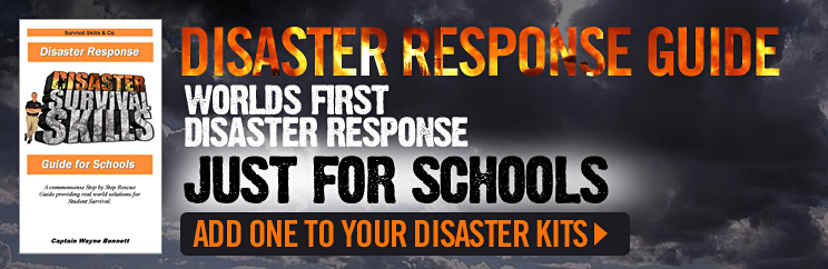 Disaster Survival Skills, LLC - ad image
