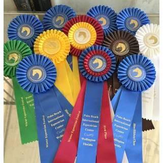 Global Equestrians Int Riding School LLC - Long Valley, NJ 07853 - (801)656-5941 | ShowMeLocal.com