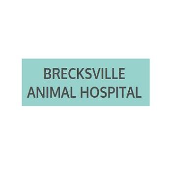 Brecksville Animal Hospital in Cleveland, OH, photo #1