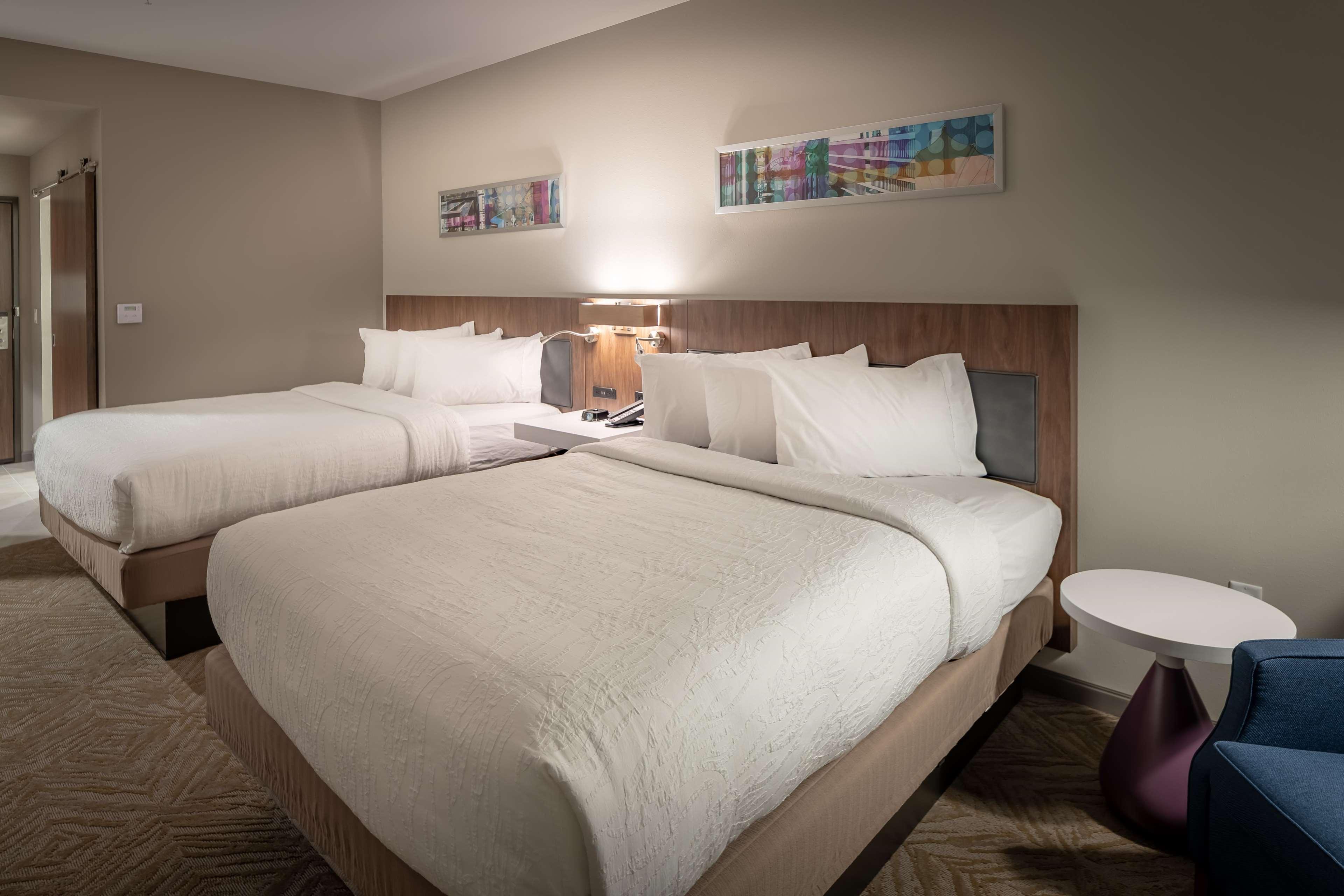 Hilton Garden Inn Dallas at Hurst Conference Center image 26