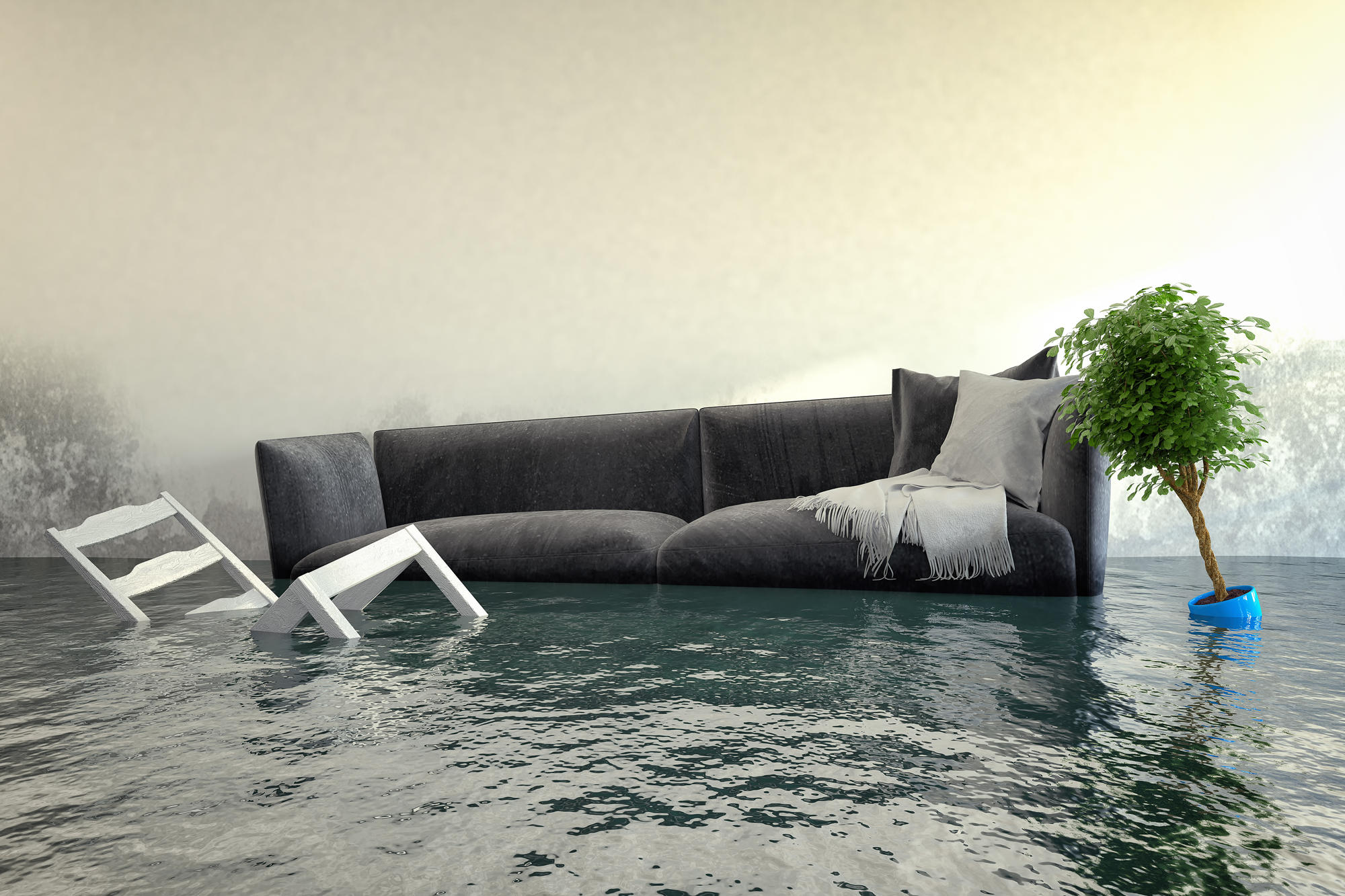 South Florida Water and Mold Restoration image 0