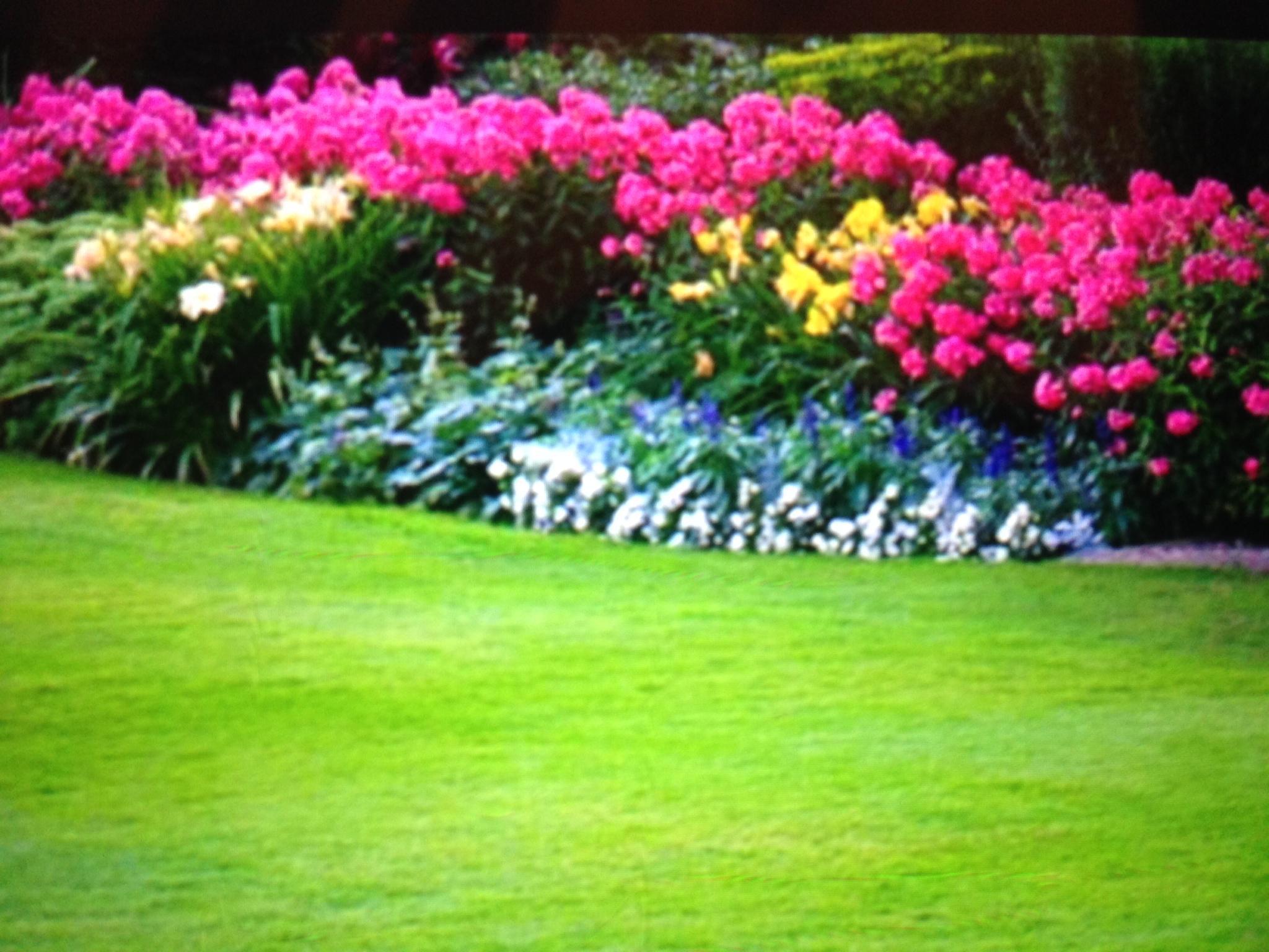 Cornelius Lawn & Landscaping image 9