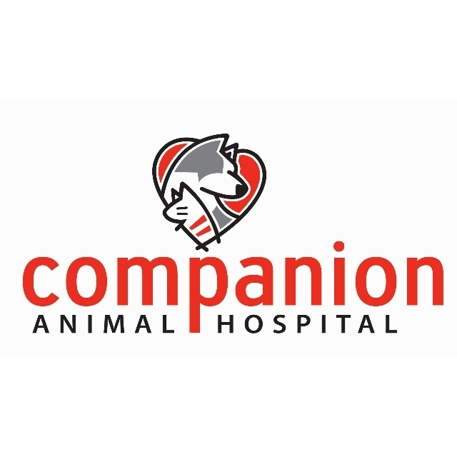 Companion Animal Hospital Oak Park