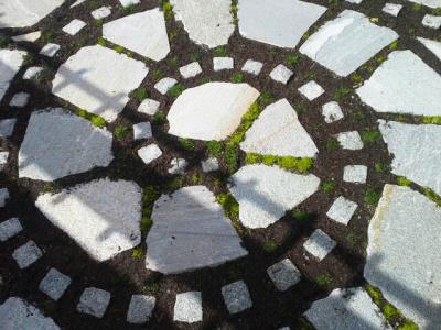 Solstice Landscape Design image 0