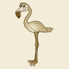 Brown flamingo septic service