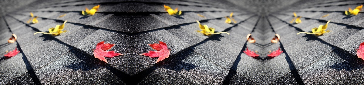 Richards Roofing Company image 3