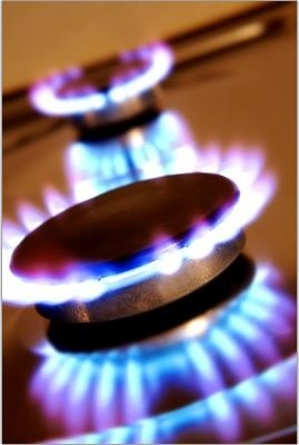 Blue Flame Gas Service image 1