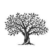 Trinity Tree Service Of Florida