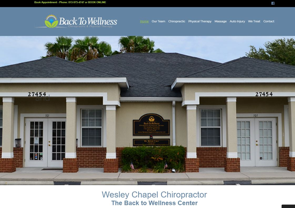 Wesley Chapel Chiropractor Website for the Back To Wellness Center.