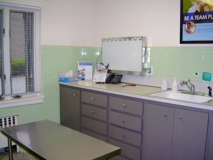 Foster Animal Hospital image 4