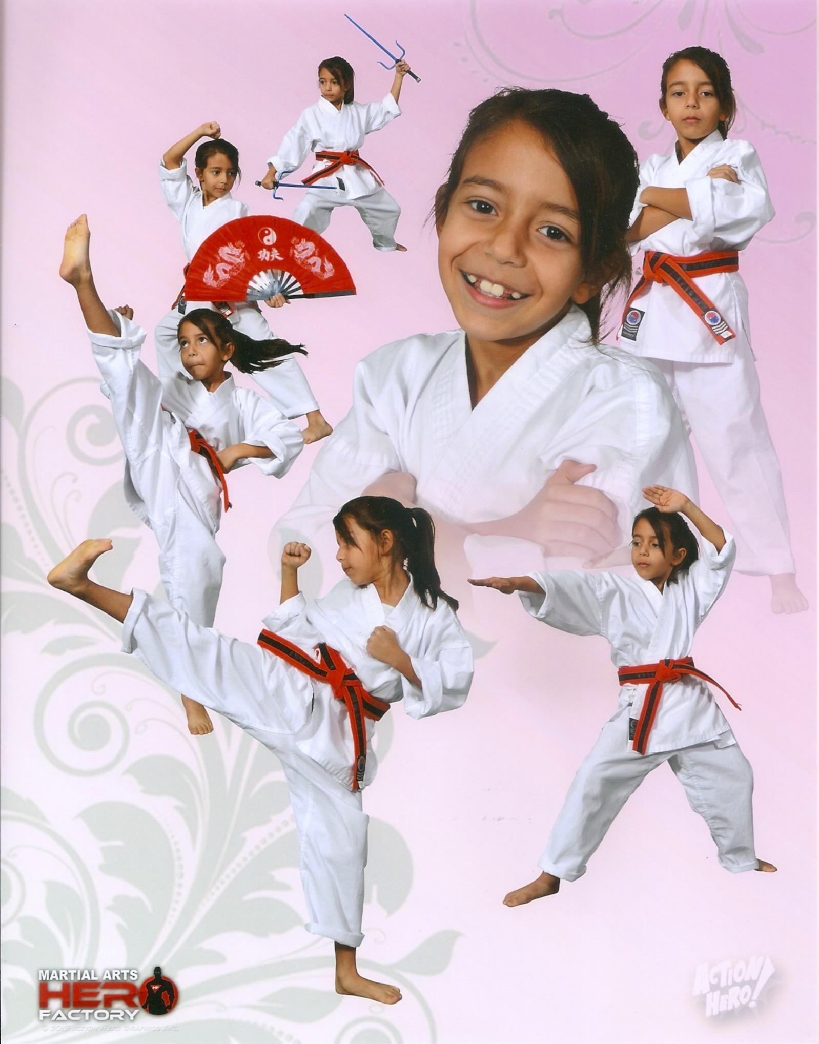 Martial Arts Hero Factory image 2