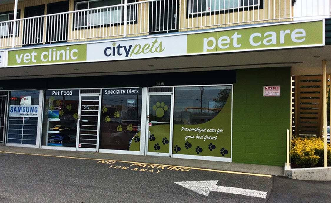 City Pets Animal Clinic in Victoria