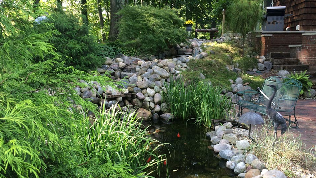 Second Nature Gardens image 0