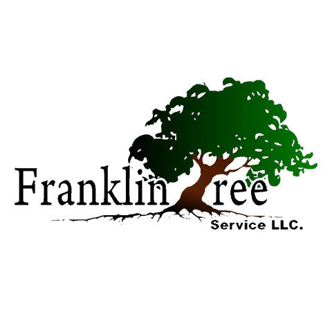 Franklin Tree Service image 3