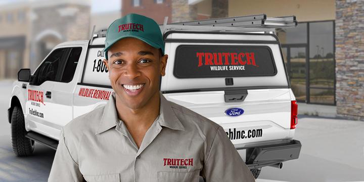 Trutech Wildlife Service image 1