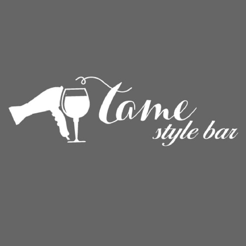 Tame Style Bar LLC