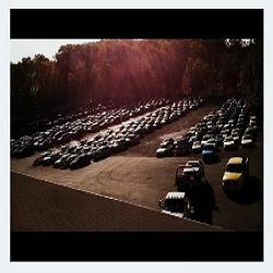 Lentini Auto Salvage image 3