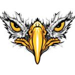 Eagles Eye Photography HD LLC