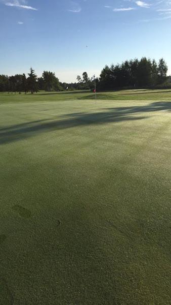 Golf on the Edge image 10
