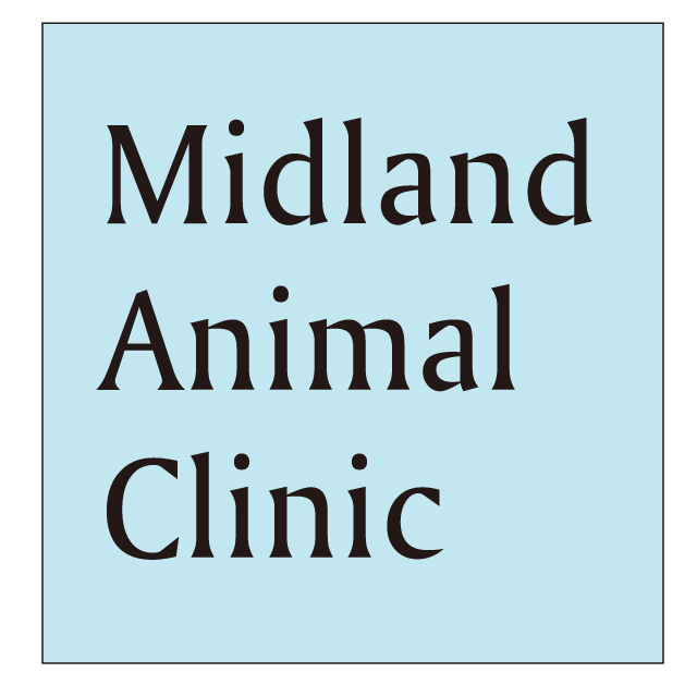 Midland Animal Clinic