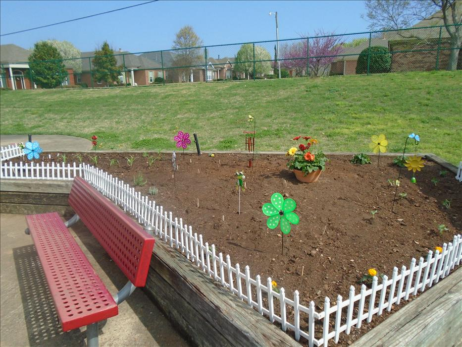 Children created a garden in March outdoors.  We can't wait to see the vegetables, fruit and flowers bloom soon!