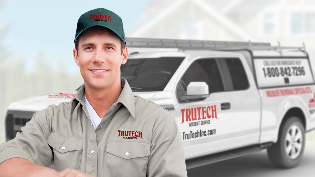 Trutech Wildlife Service image 0