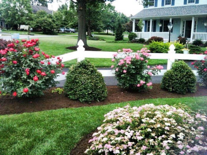 Stumpf's Lawn Care