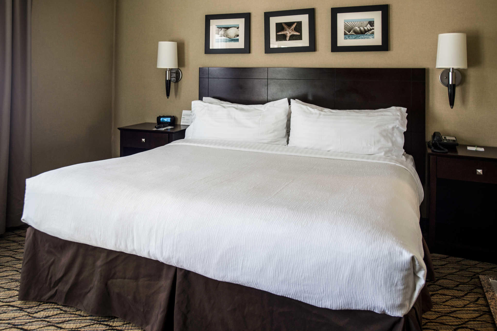 The Volare, an Ascend Hotel Collection Member image 18
