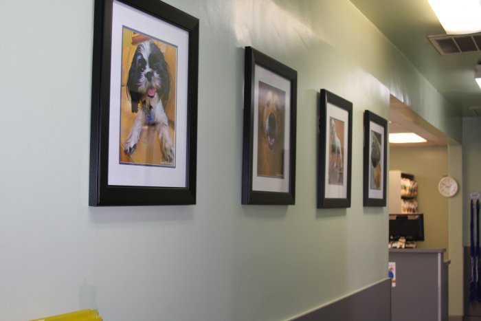 VCA La Mirada Animal Hospital image 0