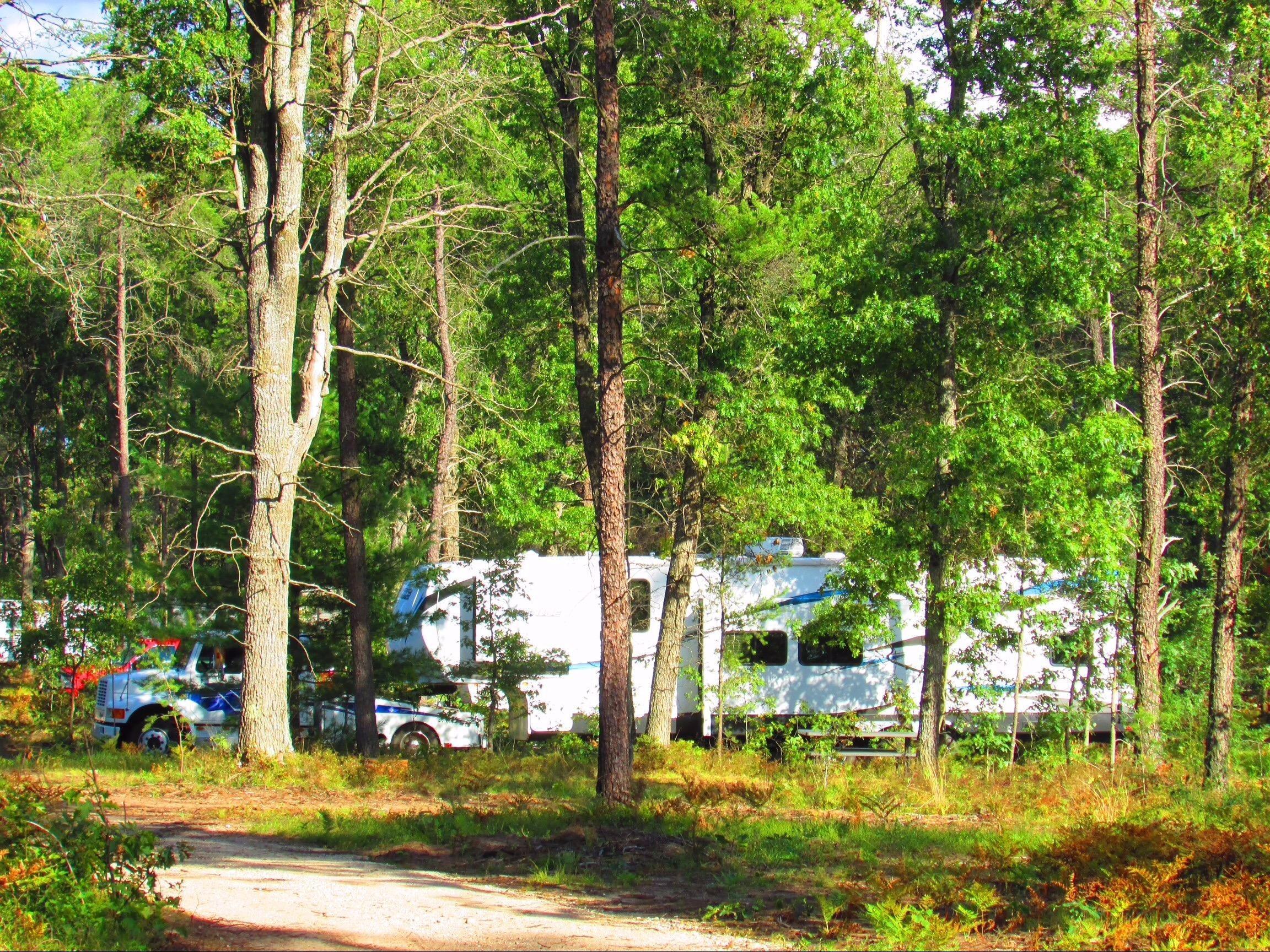 Best Bear Lodge & Campground Baldwin/Irons Area image 8