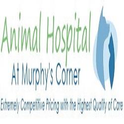 Animal Hospital At Murphy's Corner - Mill Creek, WA - Veterinarians