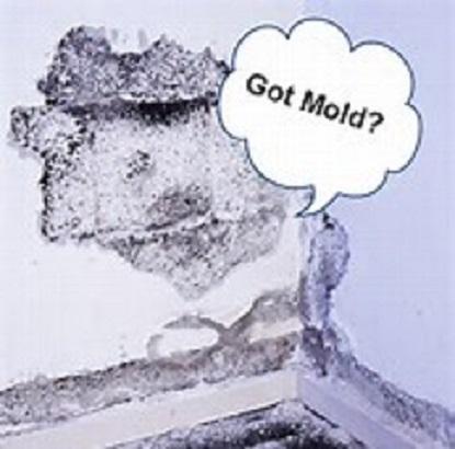 Genesis Home Solutions image 5