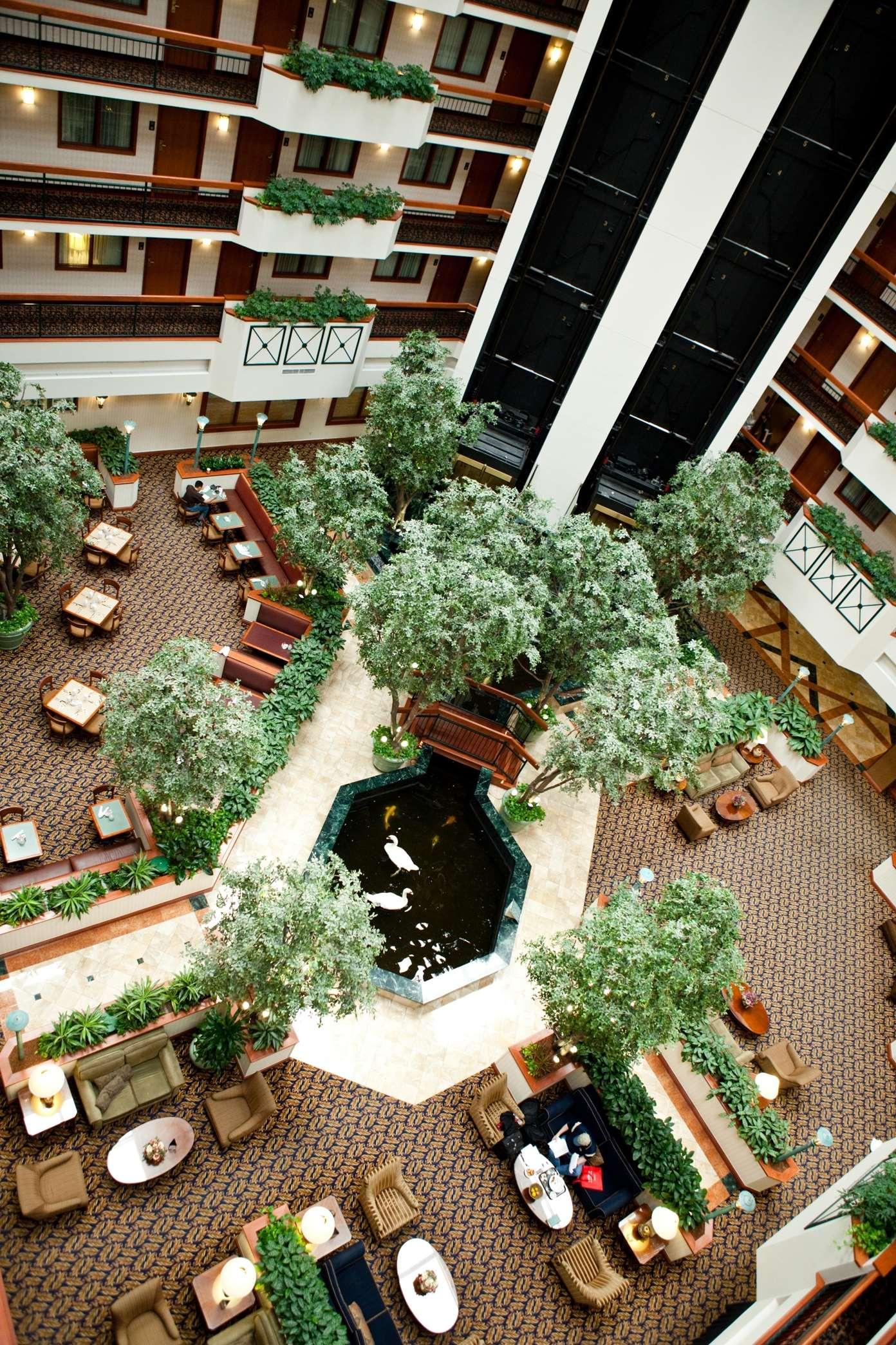 Embassy Suites by Hilton Austin Arboretum image 4