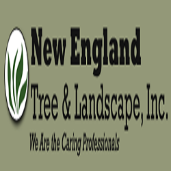 New England Tree & Landscape