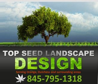Top Seed Landscape Design Inc image 9