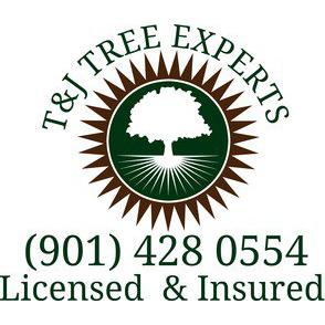 T & J Tree Experts image 8