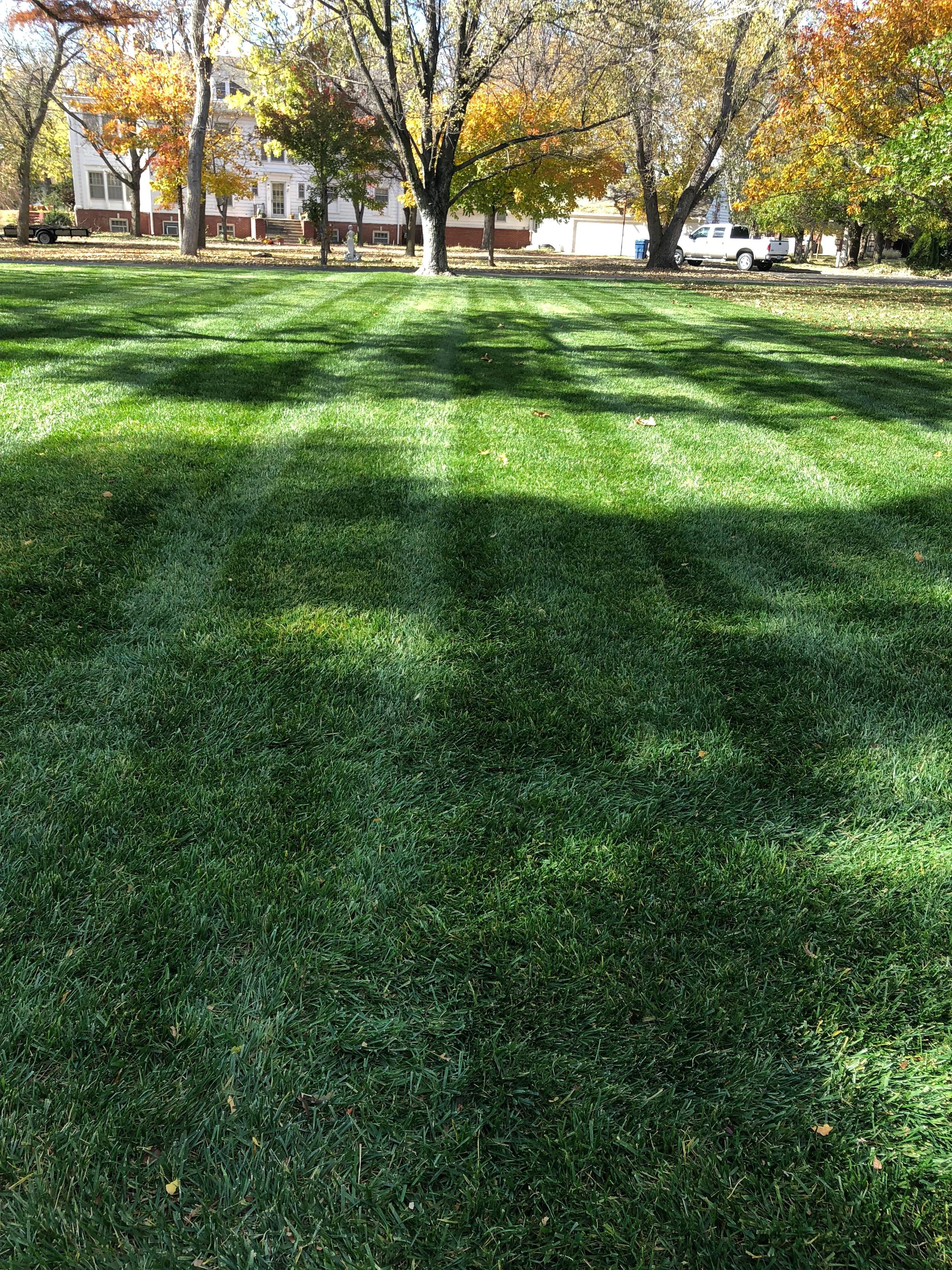 Sallee Lawn Care image 15