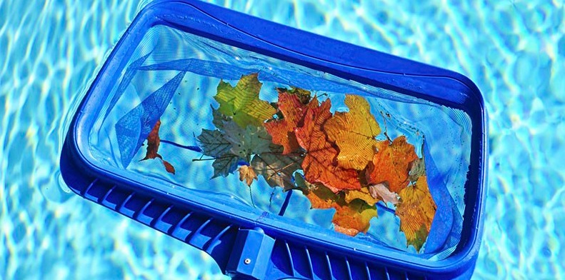 Beacon Pools Inc. image 3