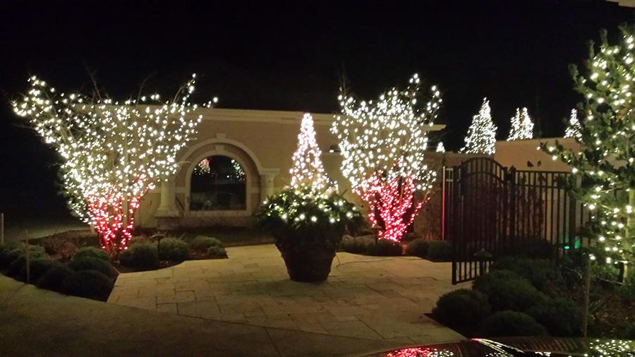 Christmas Creations LLC image 4