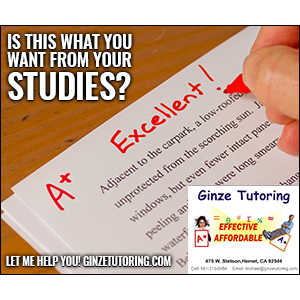 Ginze Tutoring image 3
