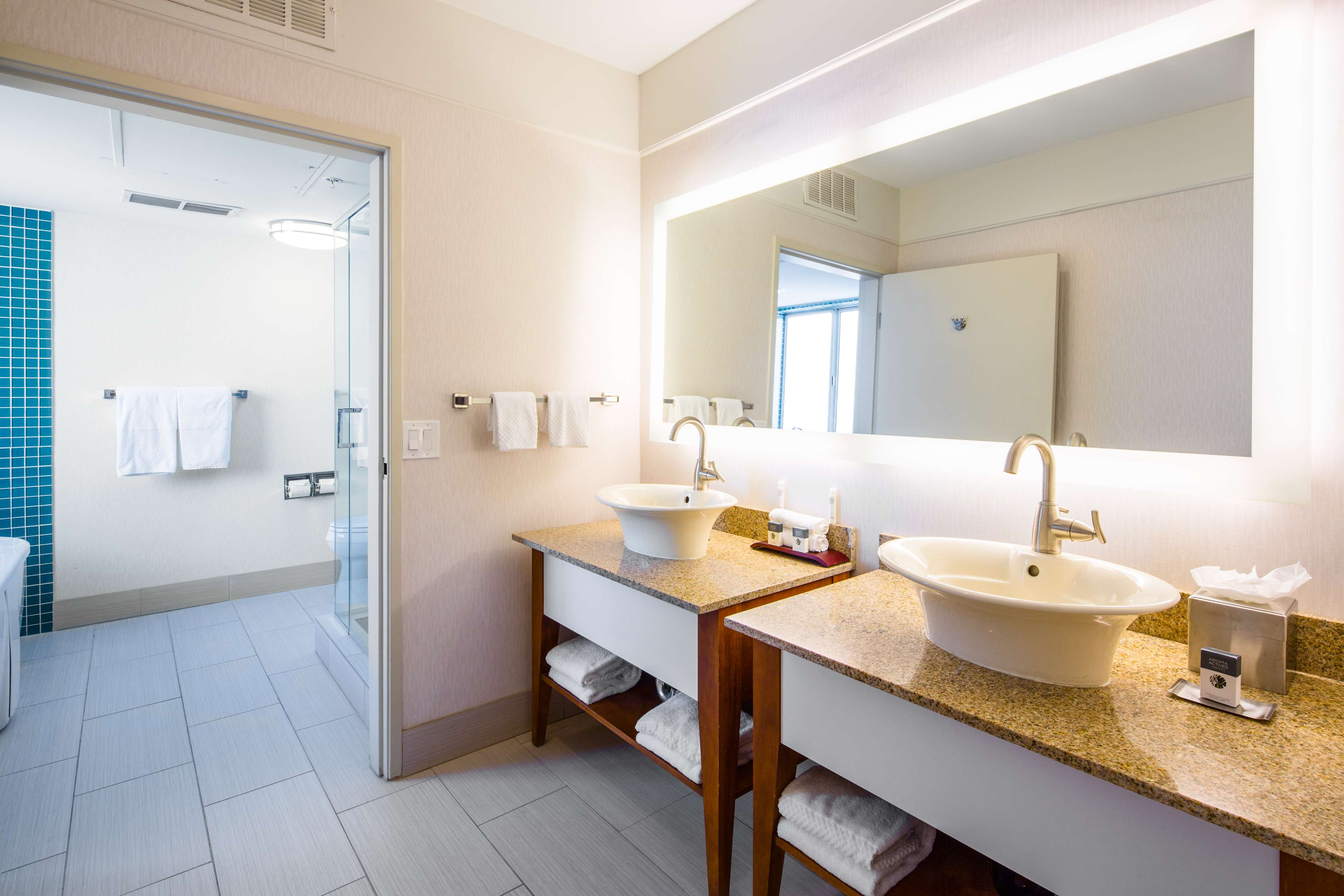 DoubleTree Suites by Hilton Hotel Doheny Beach - Dana Point image 13