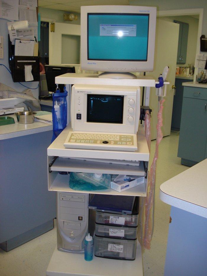 VCA Carrollwood Cat Hospital image 2