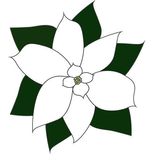 Magnolia GC Inc