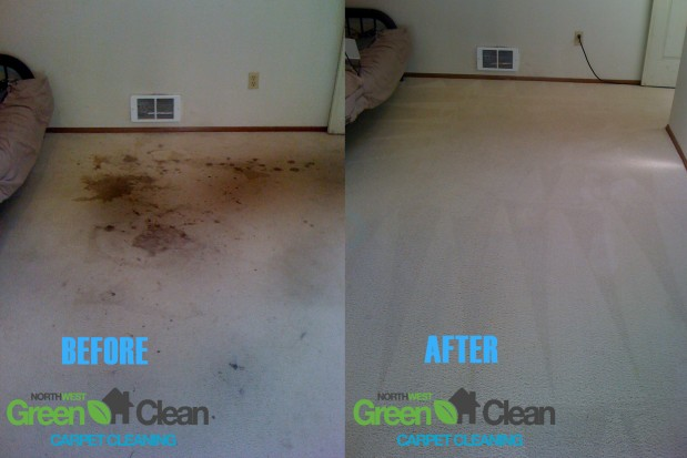 KB Cleaning Services image 2