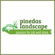 Pinedas Landscape
