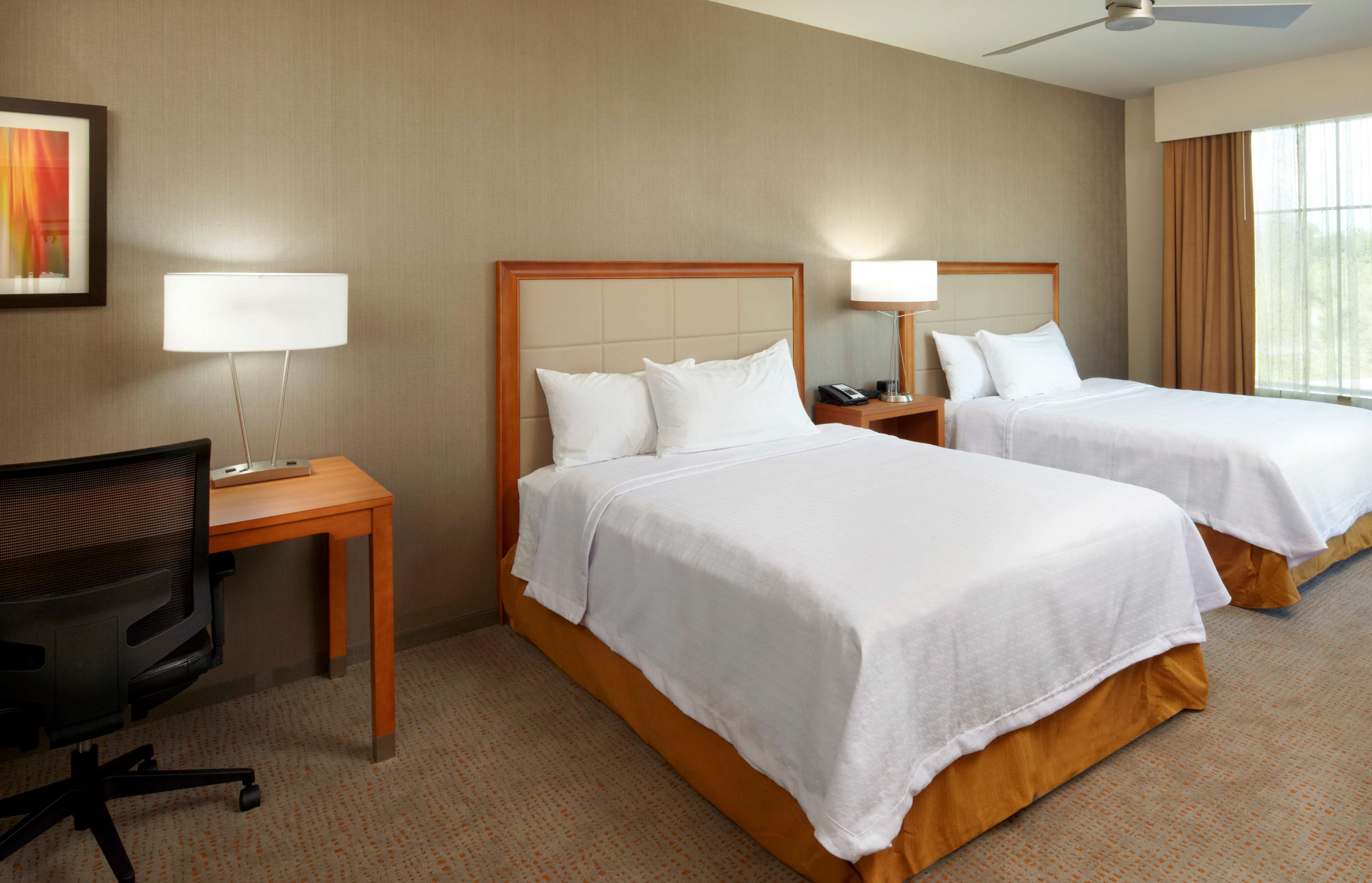 Homewood Suites by Hilton Pittsburgh Airport Robinson Mall Area PA image 12