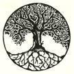 Tree Dr. LLC
