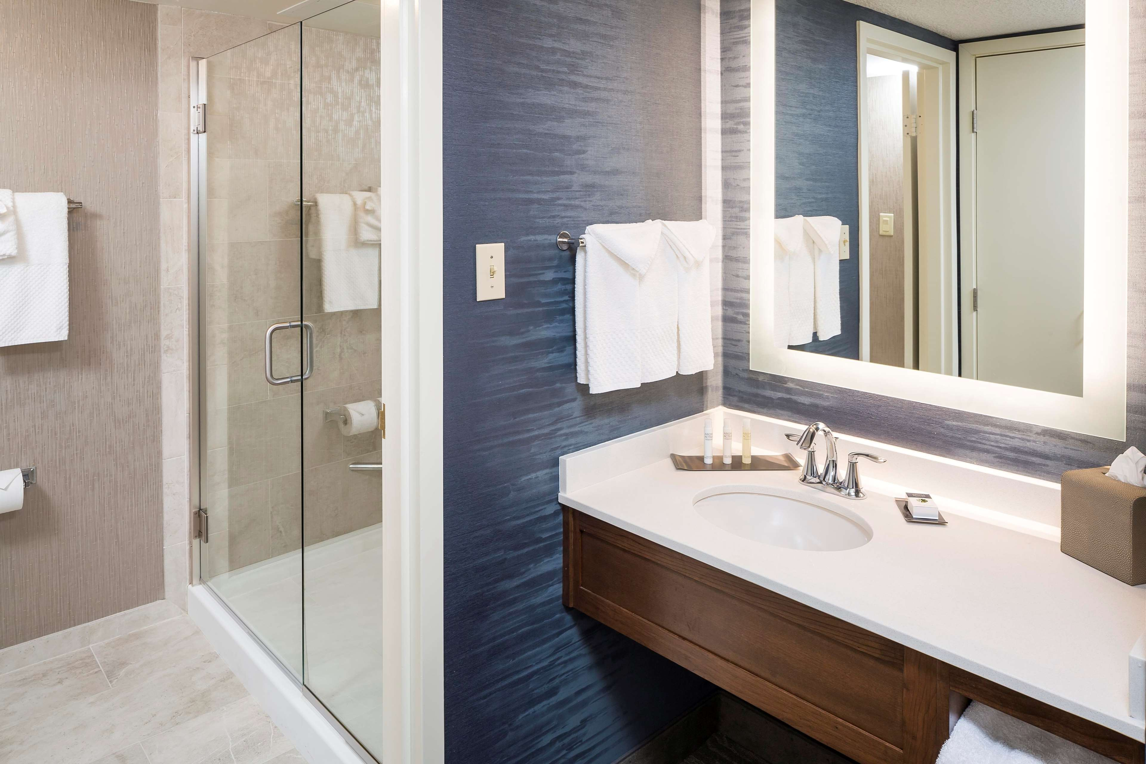DoubleTree by Hilton Boston - Andover image 36